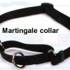 Dog Collar Round-Up, Part V: The Glorious Martingale