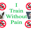 Between Punitive And Purely Positive Dog Training