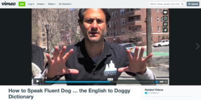How To Speak Fluent Dog Video